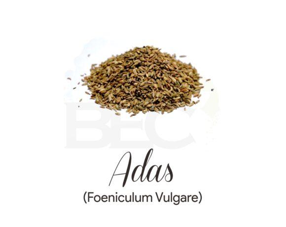 Adas ( Fennel Seed )