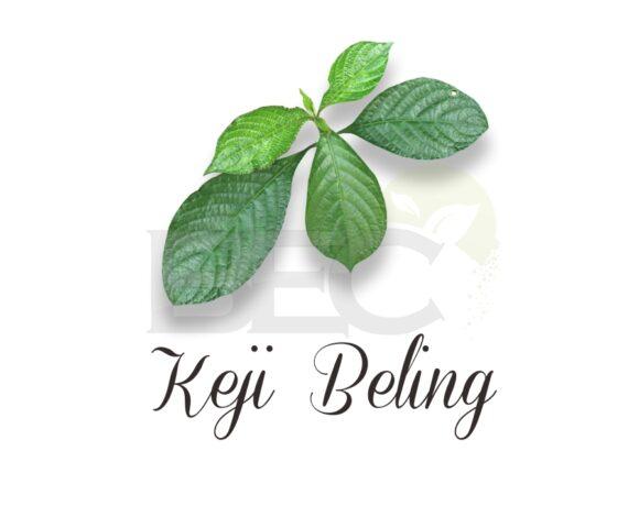 Keji Beling ( Glass Splinter )