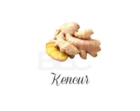 Kencur ( East Indian Galanga )