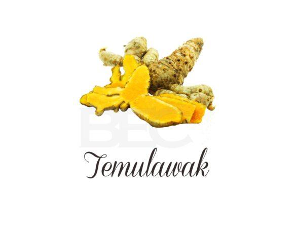 Temulawak ( Curcuma )